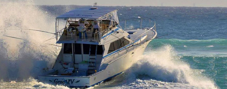 Geno iv boynton beach fishing charter for Boynton beach fishing charters